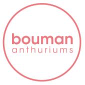 Logo Bouman roze